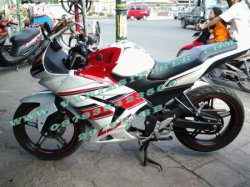 FAIRING MODEL NINJA 250 GP EDITION